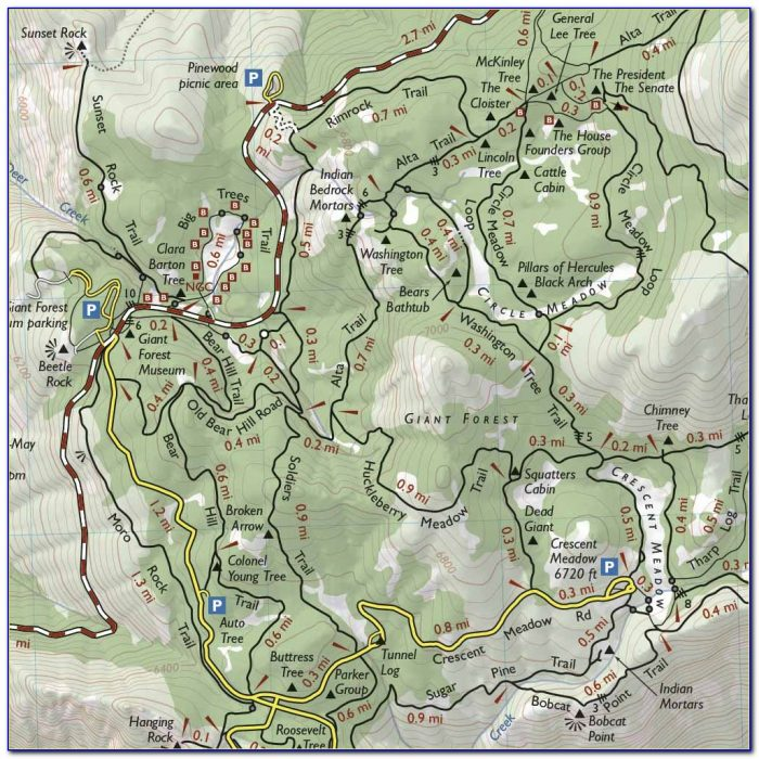 Sequoia National Park Hiking Map