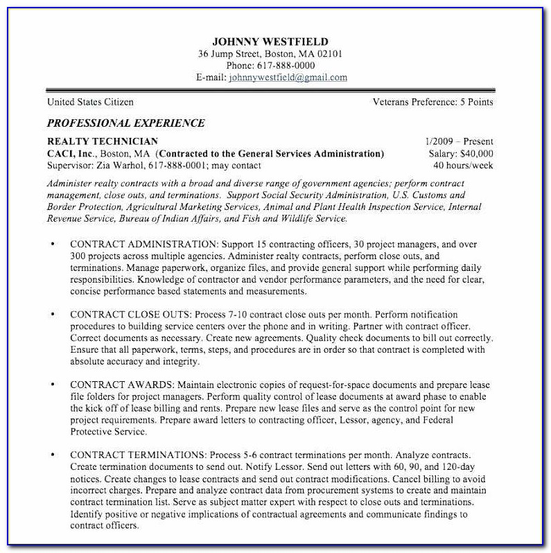 Professional Resume Writing Services New Excellent Be A Resume Writer Resume Design