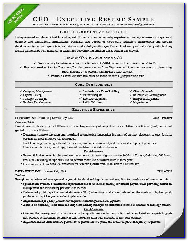 Best Executive Cv Template Uk