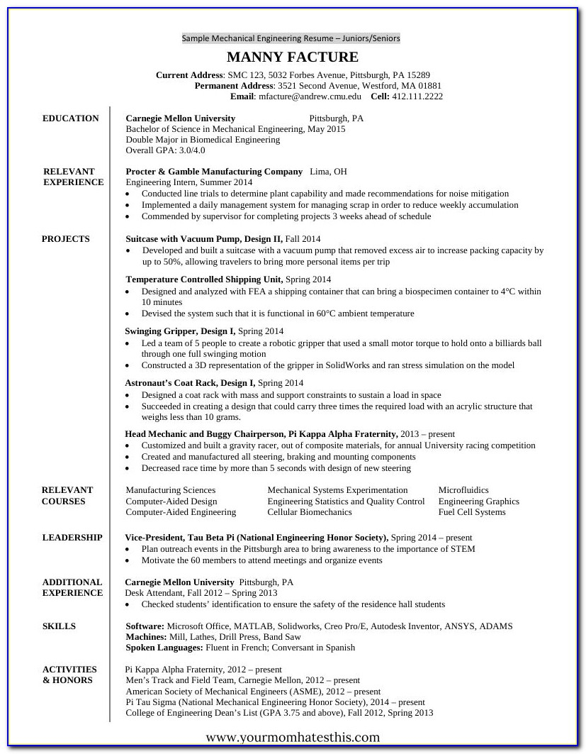 Best Resume Templates Samples