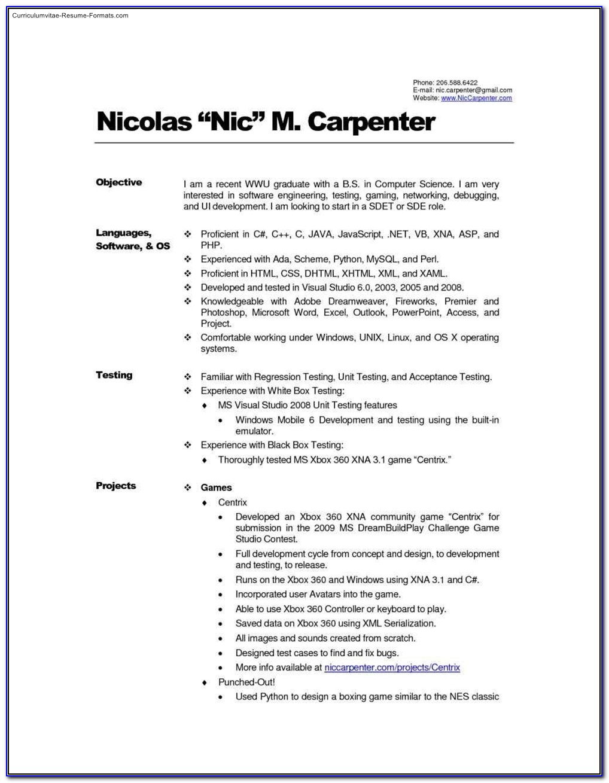 Carpenter Resume Template