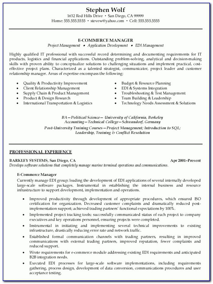 E Resume Examples. Electronic Resume Services Electronic Resume For Ecommerce Resume Sample