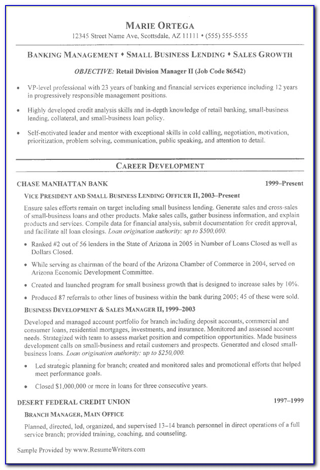 Curriculum Vitae Samples For Banking Jobs