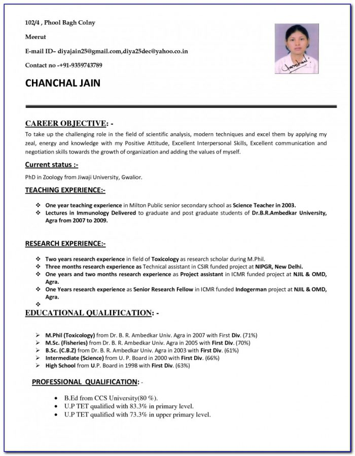 Cv Format Pdf For Teaching Job Free Cv Templates Download With Cv Inside Job Resume Format