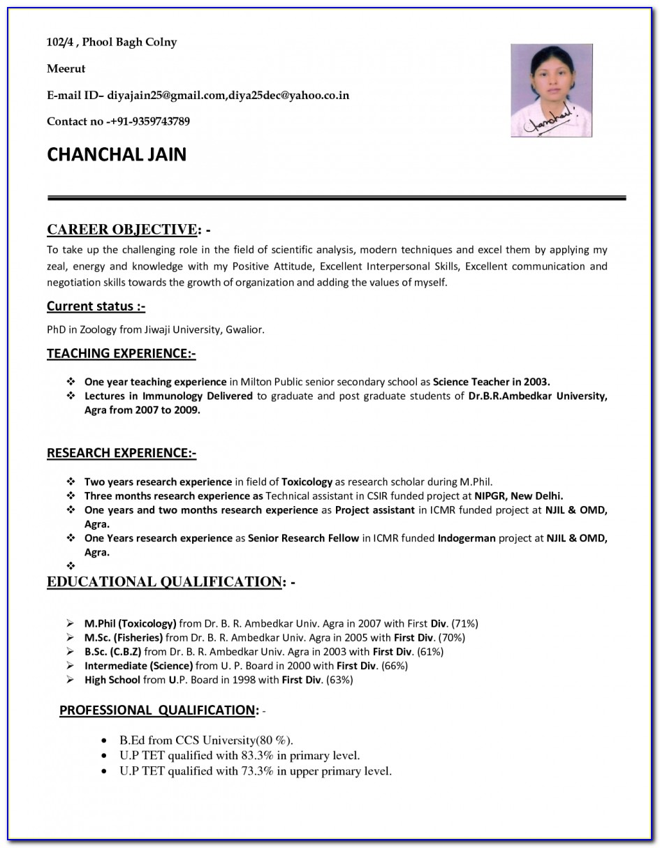 Cv Format Pdf For Teaching Job Free Cv Templates Download With Cv Inside Job Resume Format