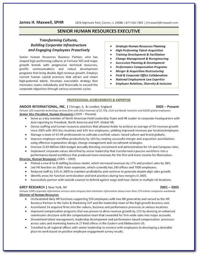 Executive Resume Formats 2018