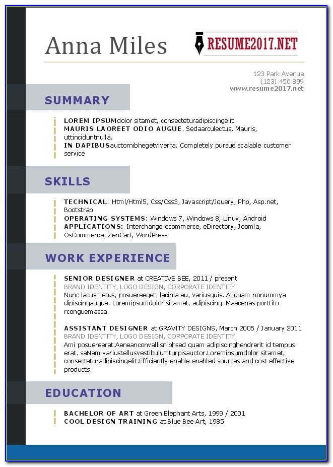 Resume Format 2017 16 Free To Download Word Templates For Professional Resume Template 2017