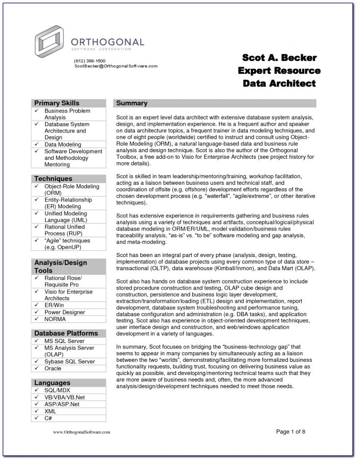 Resume Template Business Analyst Resume Template Word Expert As Pertaining To Basic Resume Template Word