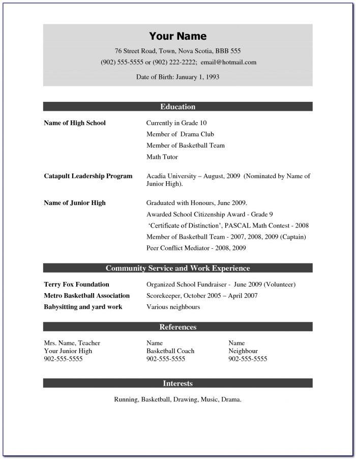 Fresher Resume Format Pdf Free Download