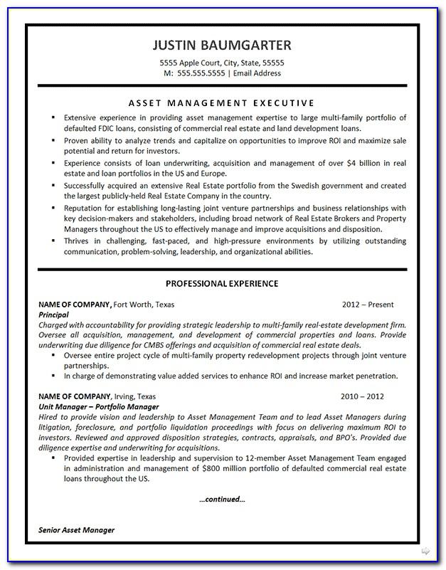 It Asset Management Resume Example