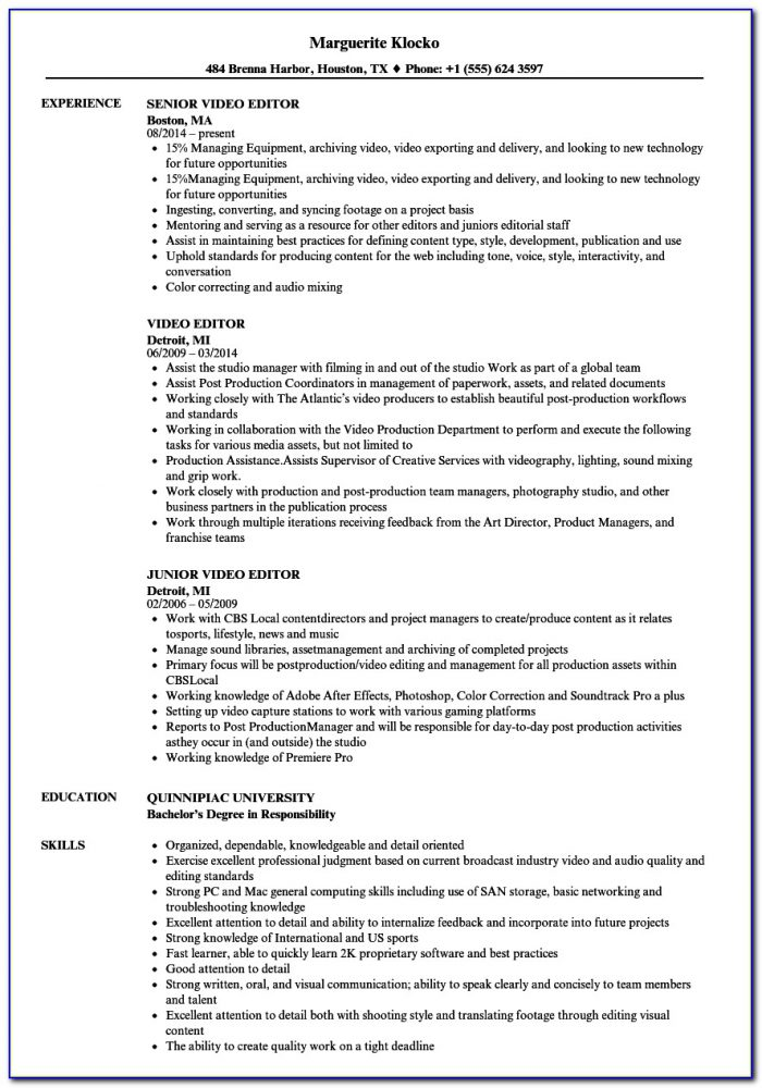 Online Resume Template Editor