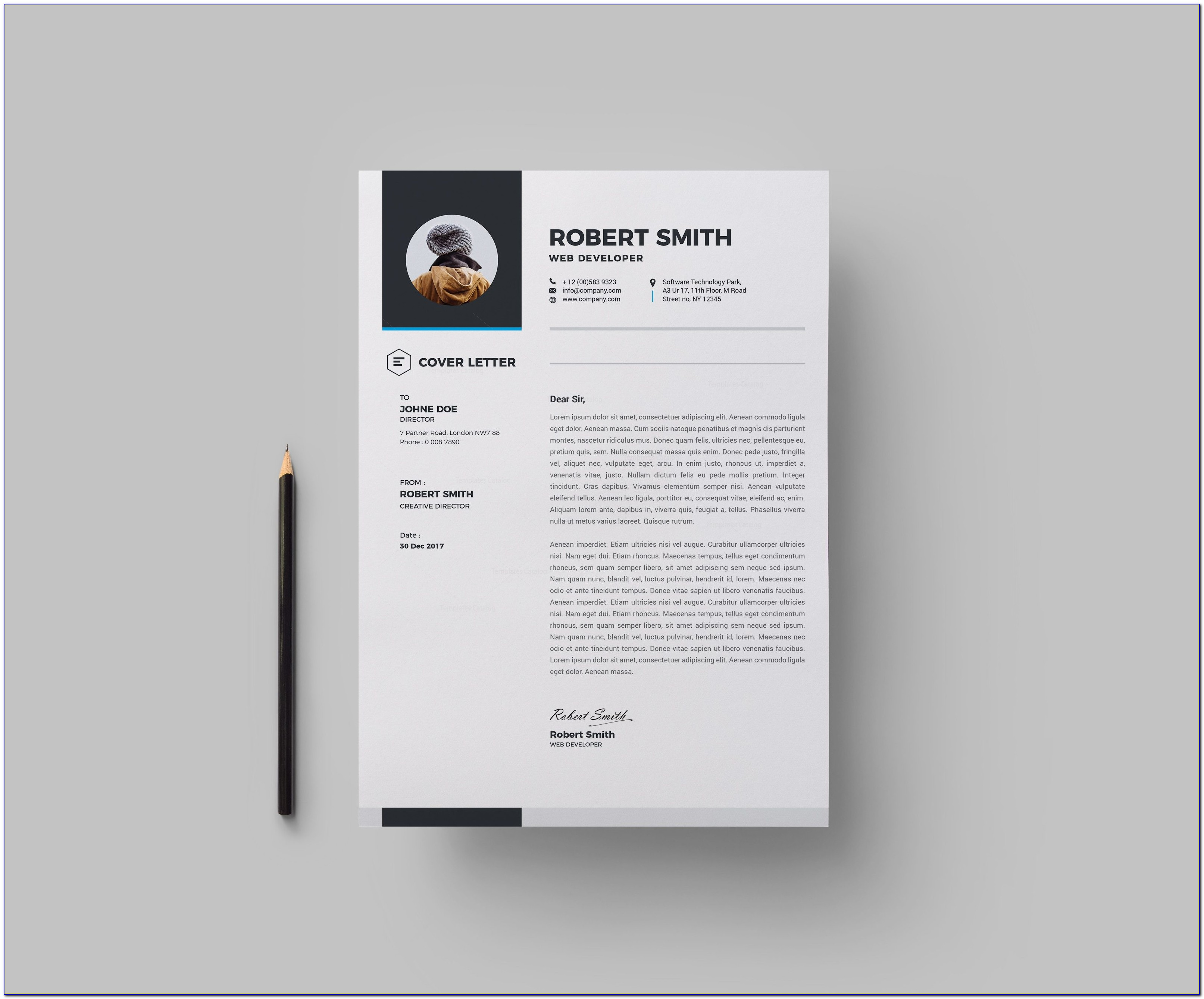 Premium Resume Templates Download