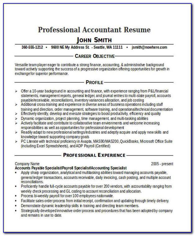 Professional Cv For Accountant Job