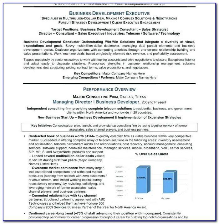 Professional Resume Service Dallas