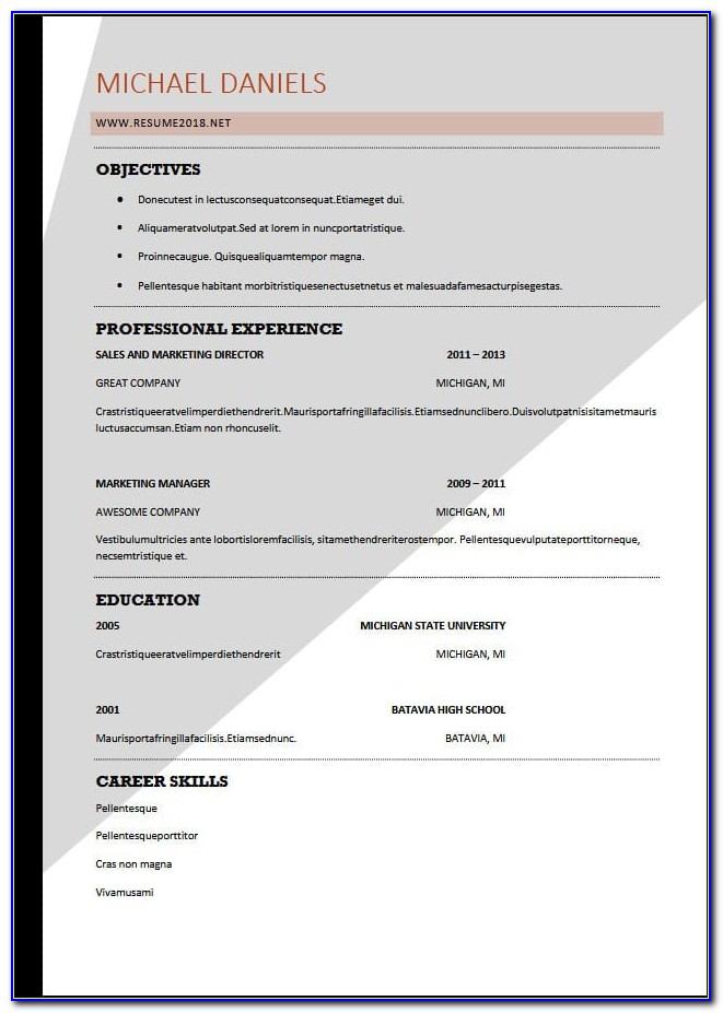 Resume Format Download In Ms Word 2007 For Freshers
