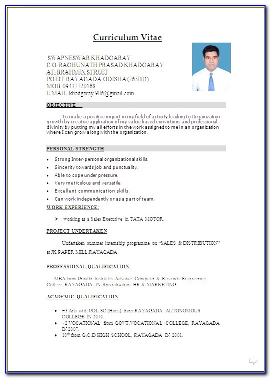 Resume Format In Word File Free Download