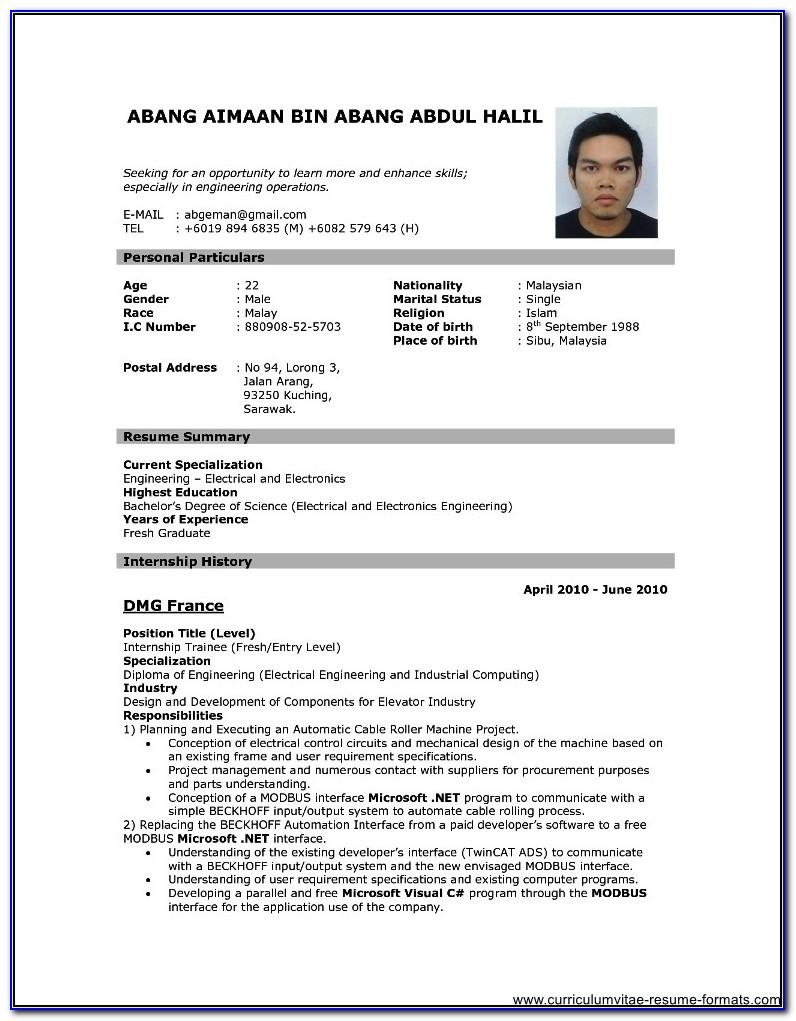 Professional Resume Format Download Pdf