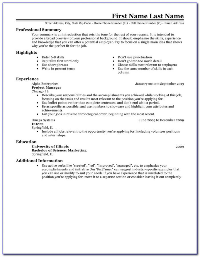 Resume Templates Example