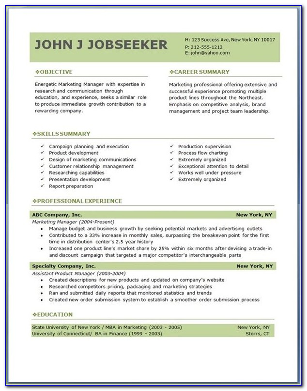 Resume Templates Executive Level