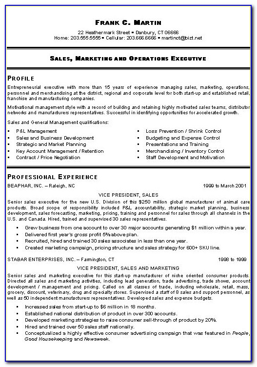 Resumes For Account Executives