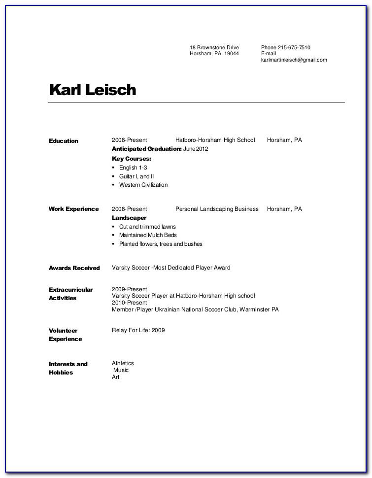 Sample Copy Of Job Resume