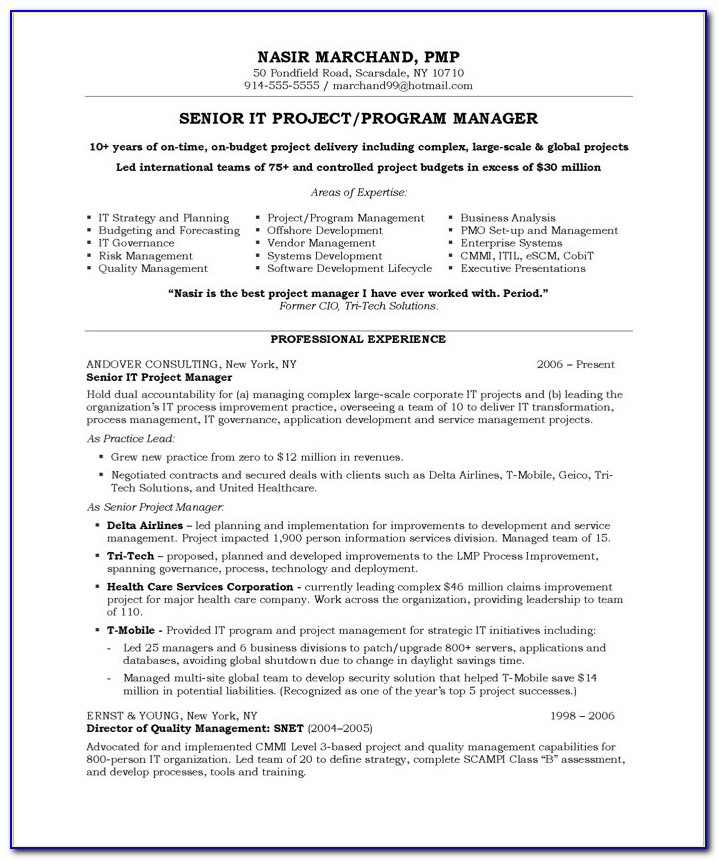 Sample Objective Statement For Project Manager