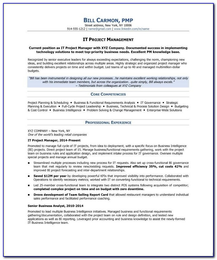 Sample Resume Project Manager Ngo