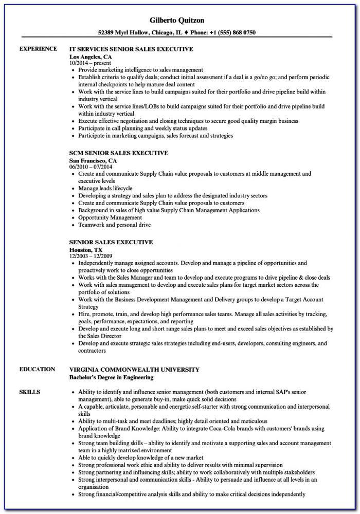 Senior Sales And Marketing Executive Resume Sample