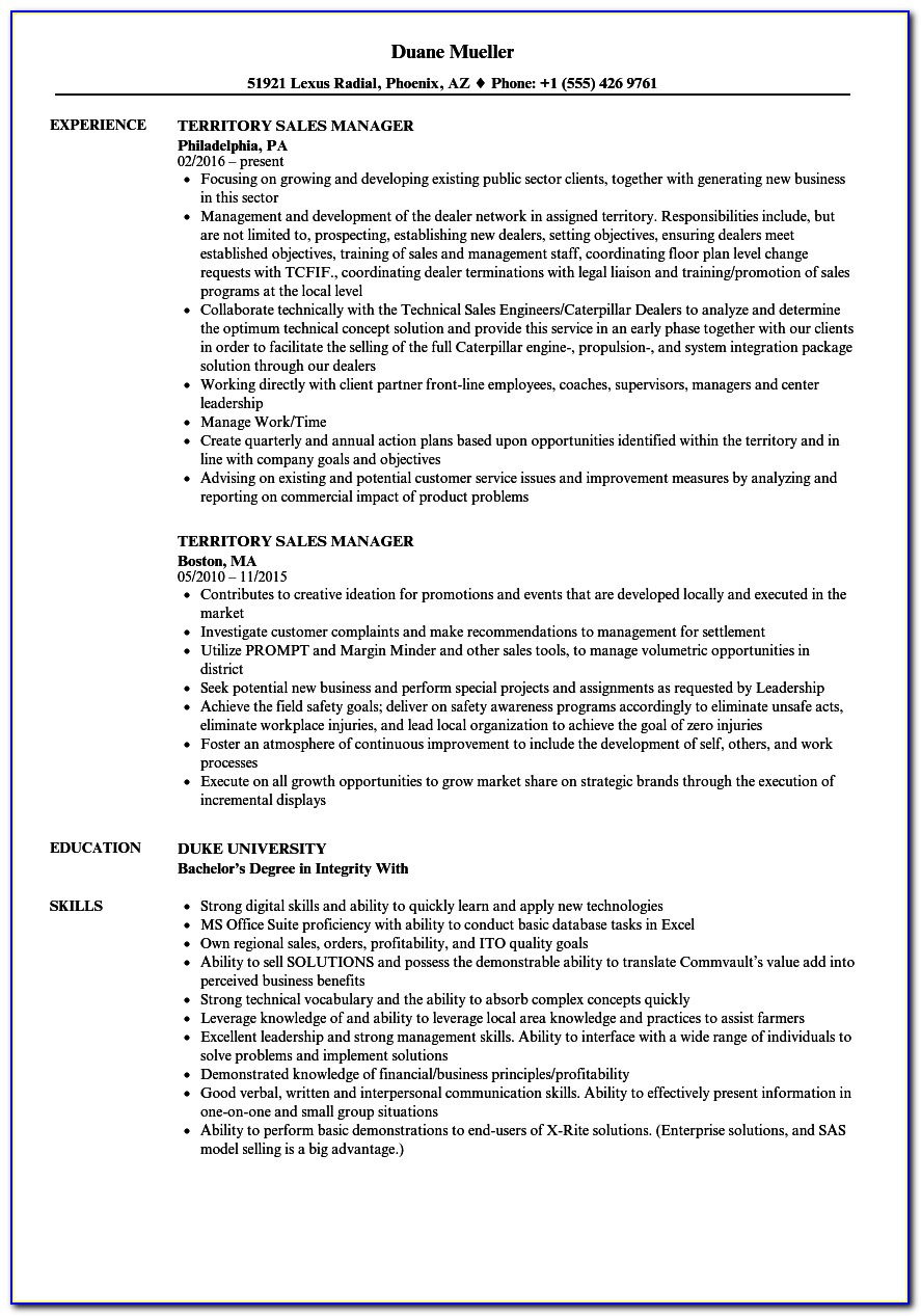 Territory Sales Manager Resume Template