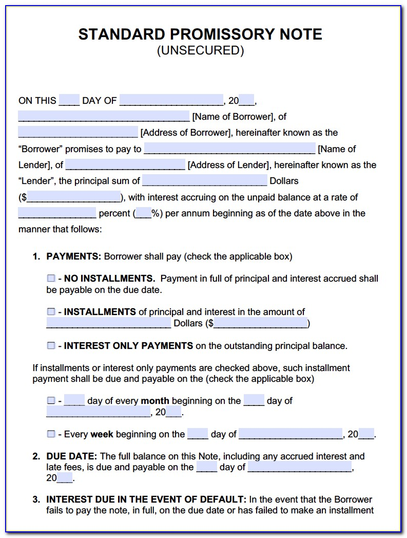 Interest Only Promissory Note Form