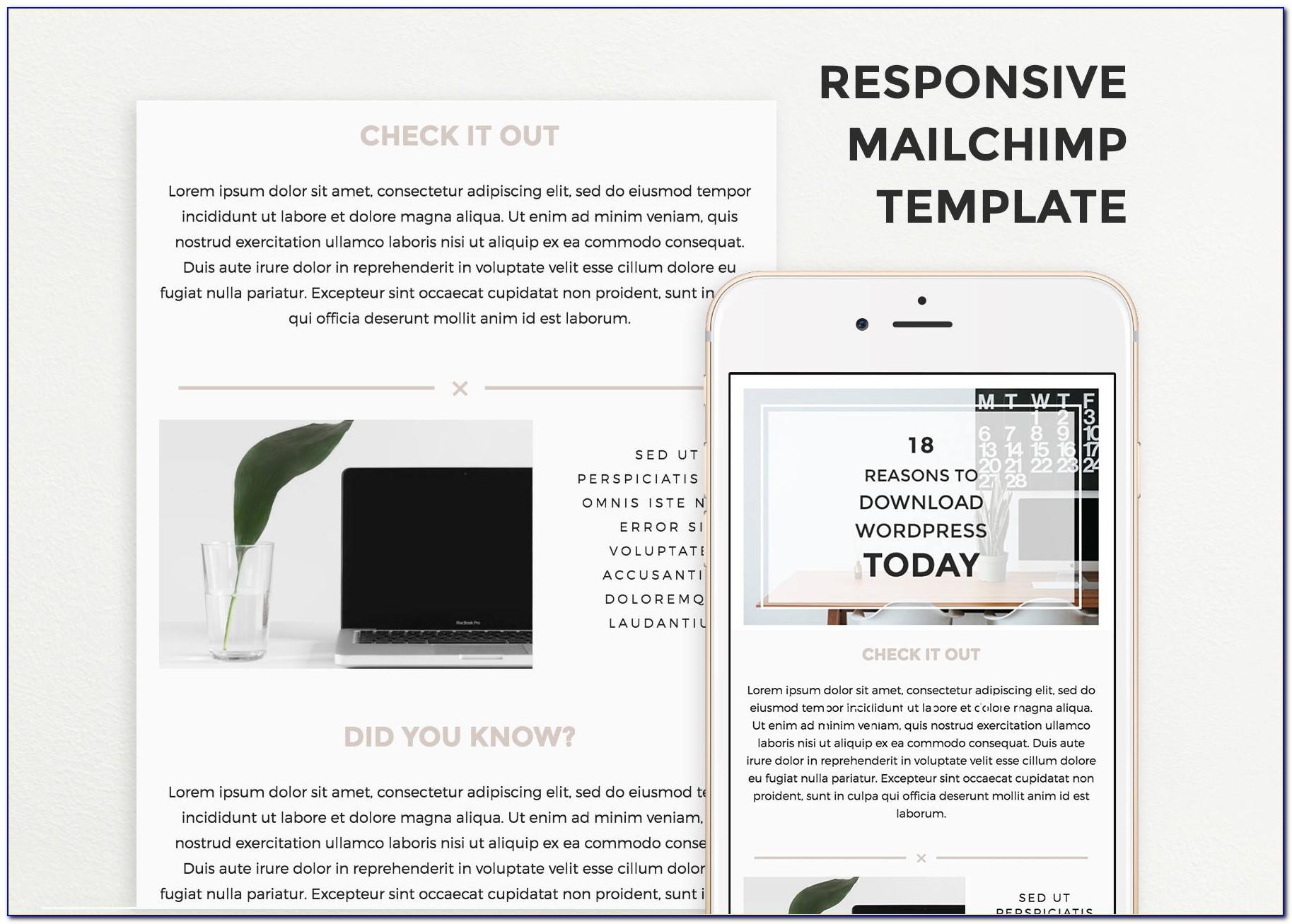Mailchimp Template Responsive