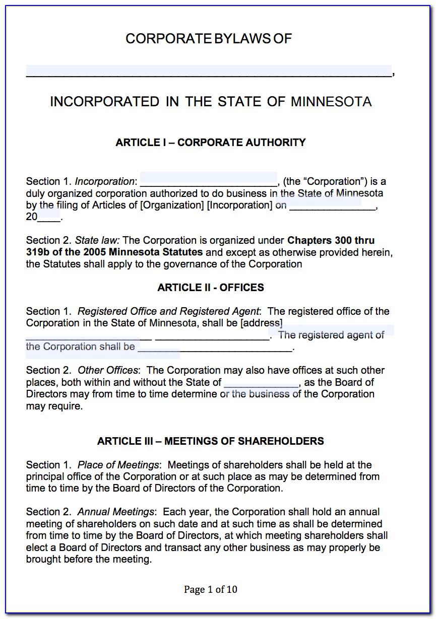 Minnesota Non Profit Bylaws Template
