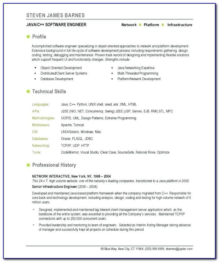 Software Developer Resume Template