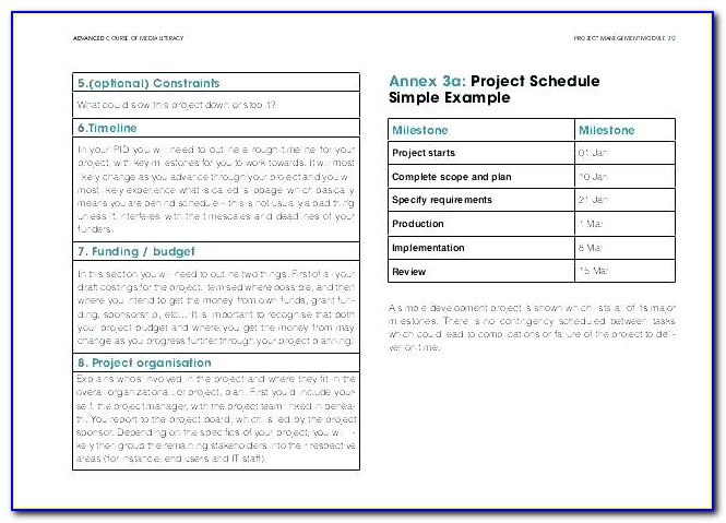 Software Development Plan Template Excel Download