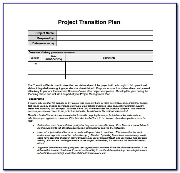 Software Project Transition Plan Template Excel