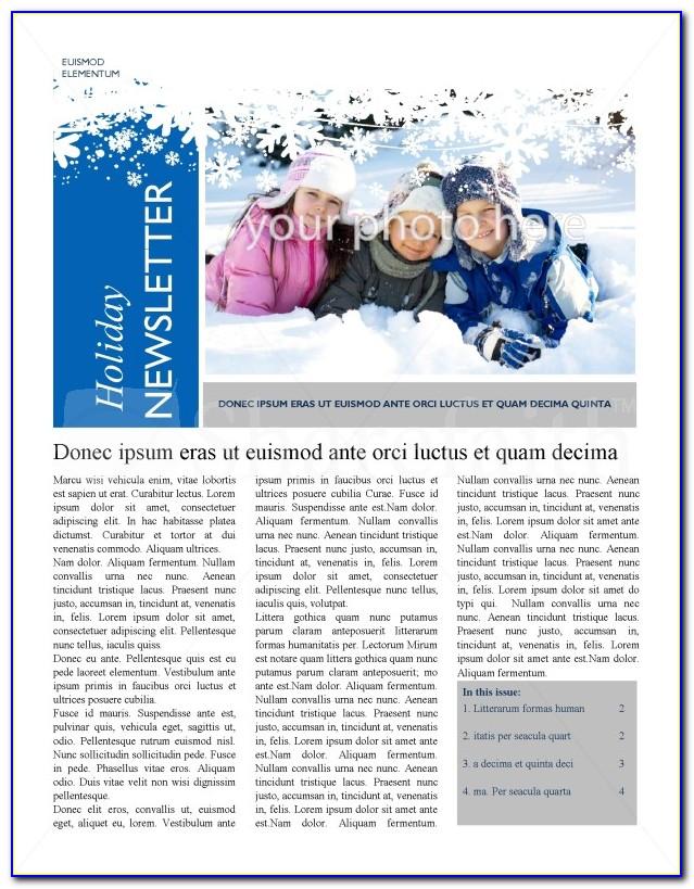 Winter Themed Newsletter Templates