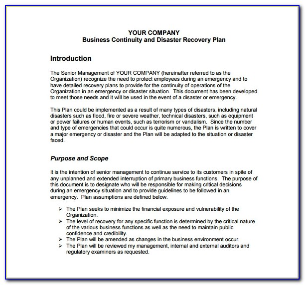 Business Continuity Disaster Recovery Plan Example