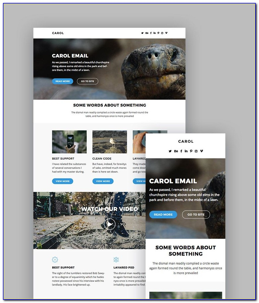 Does Mailchimp Have Newsletter Templates