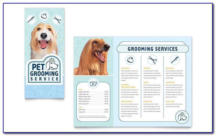 Dog Grooming Flyers Template