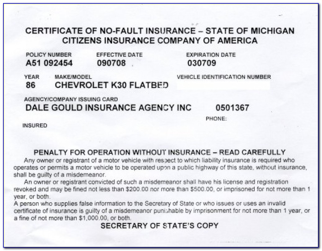 Fake Auto Insurance Card Template
