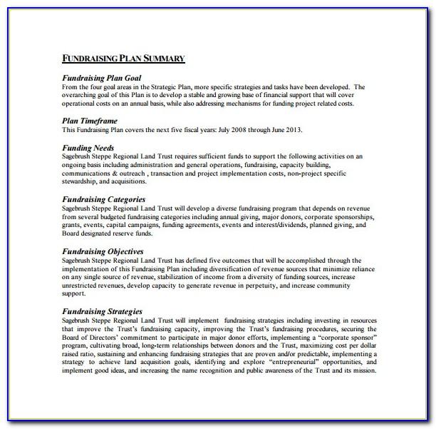 Fundraising Strategic Plan Sample