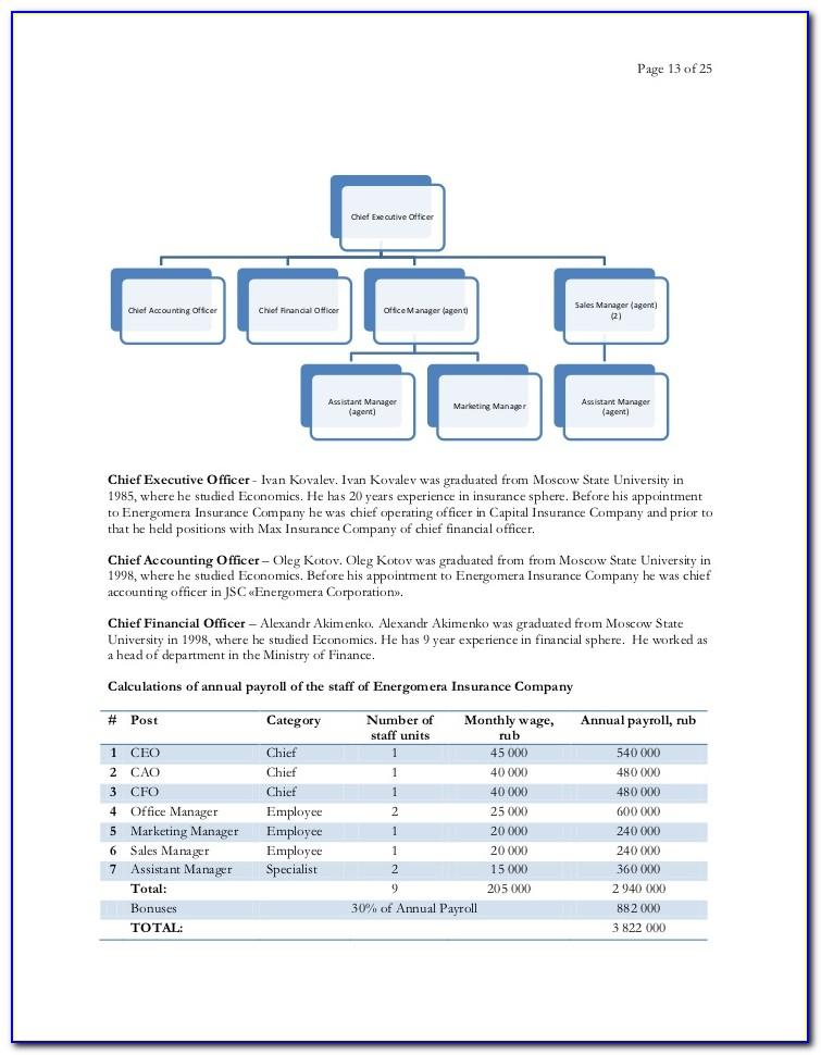 Insurance Business Plan Format