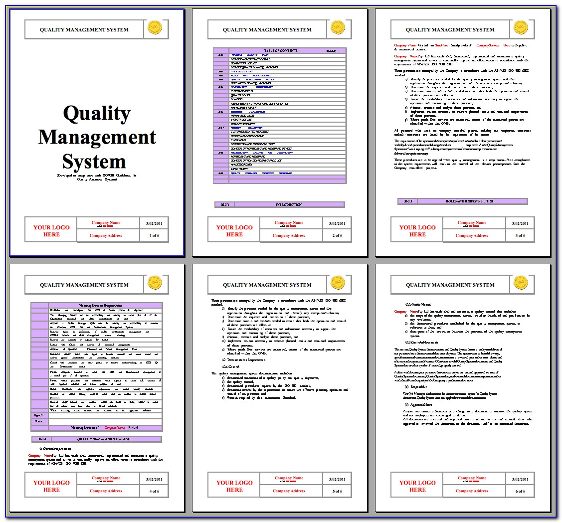 Iso 9001 Management Review Meeting Template