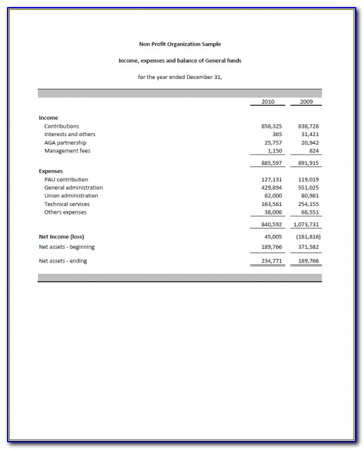 Sample Financial Statement For Non Profit Organizations Samples Of & Income Statement For Non Profit Organization Template