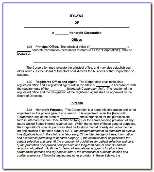 Organization Bylaws Sample
