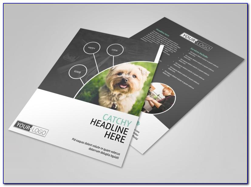Pet Grooming Flyer Template