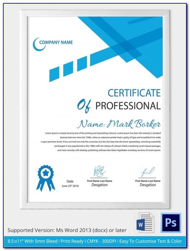 Professional Certificate Templates Free