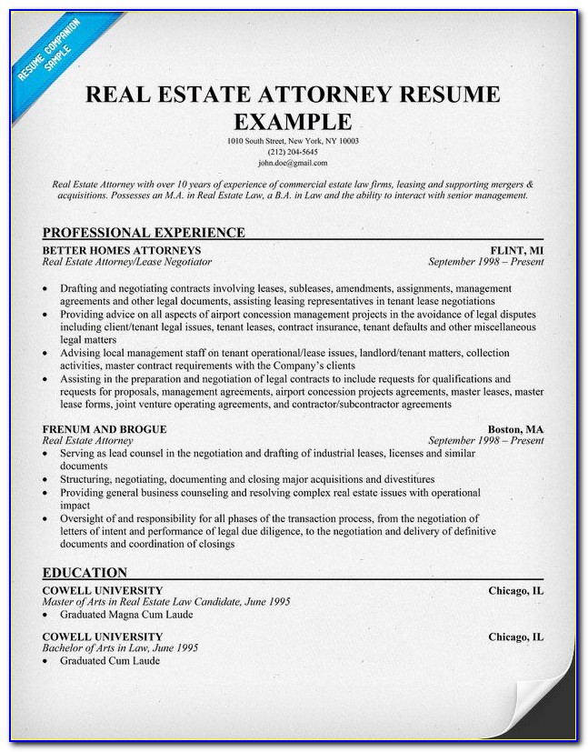 Real Estate Resume Template