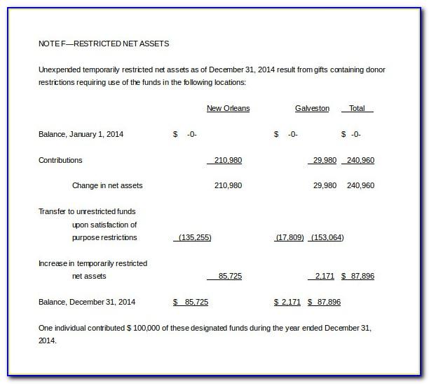 Sample Non Profit Income Statement