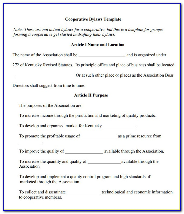 Sample Organization Bylaws